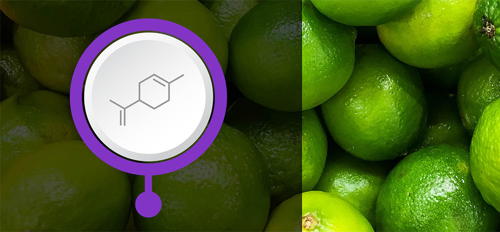 Image for An Introduction to Terpenes article image